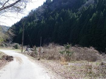 20120408-6.jpg