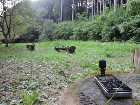 20150801-01_shinshiro park.JPG