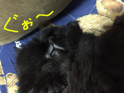 20160907-01_az.jpg